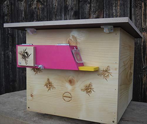 Profi XXXL Hummelkasten mit Wachsmottensperre und Zufütterung, 2X Sichtfenster und Nistmaterial geflammt oder Imprägniert Wetterfest Bienenhaus...