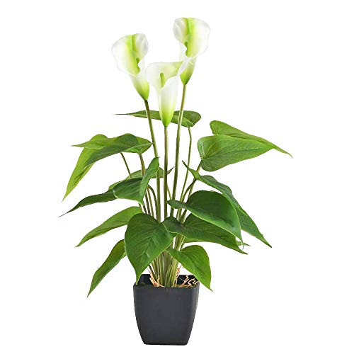 GTIDEA 17 inches Artificial Calla Lily Potted Plant Fake Bonsai Flower Arrangements with Black Plastic Pot Home Office Bedroom Table Centerpieces Decor White