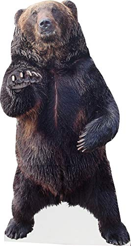 aahs!! Engraving Animal Life Size Cardboard Cutout Stand Up | Standee Picture Poster Photo Print (Bear)