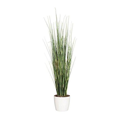 Pflanzen Kölle Kunstpflanze Equisetumgras grün, im Kunststofftopf, ca. 125 cm
