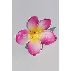 Pink Frangipani w/ Yellow Centre Plumeria Single Hawaii Flower