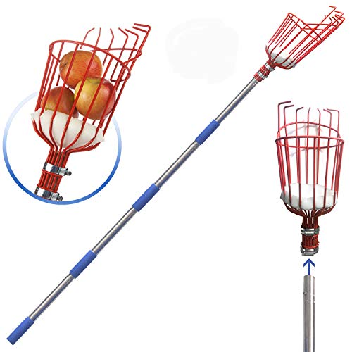 SANDEGOO Fruit Picker, a 5.5-Foot-Long Fruit Picker Equipped with Optional Splicing of Lightweight Stainless Steel to Pick Apples, Oranges and Fruit Trees (5.5 FT)