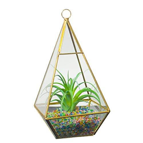 Gmgod���Casa de flores de cristal, geométrica, de vidrio carnoso, para casa, para...