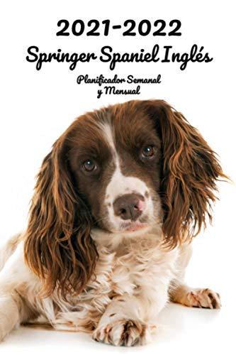 2021-2022 Springer Spaniel Inglés Planificador Semanal y Mensual: 152 Páginas | Tamaño A5 | 26 Meses | Una semana por página | Planificador | Perro | En Español | Diario de...