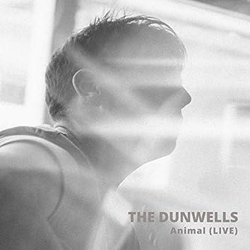 Animal (Live)