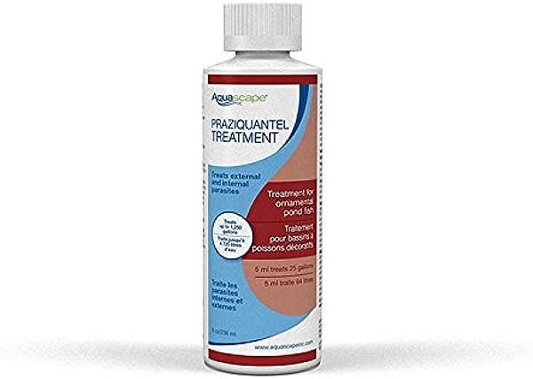 用于池塘鱼的 Aquascape 81041 吡喹酮治疗 8 5 盎司