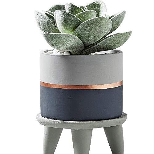 Collection Printemps Ensemble, magnifique Cactus Plante en pot Pot de fleurs, ciment Pot Contenance bambou vaisselle Plantation Vert Pot de fleurs Nordic Wind Ciment charnue Vert Cactus Flower Pot Fig