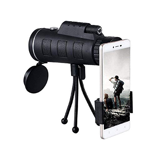 Turn your phone into a telescope