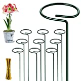 """AnDongo 10 Pack Plant Stakes 16""""/40cm Metal Plant Support Stakes, Sturdy Garden Single Stem Plant Support Flower Stakes with 750Pcs Plant Twist Ties for Amaryllis Lily Peony Paperwhite Orchids"""