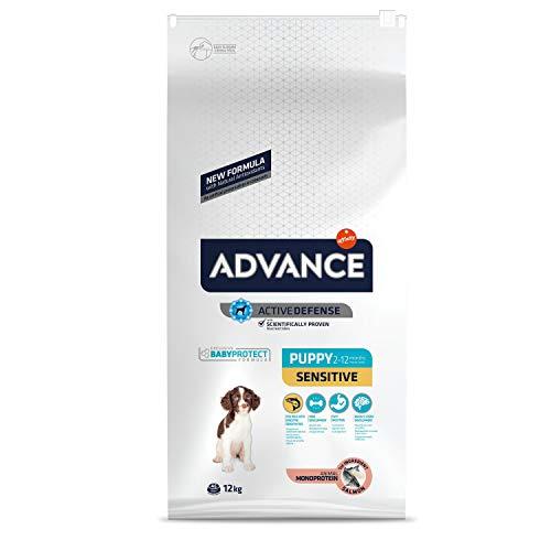 ADVANCE Sensitive Puppy - Croquettes pour Chiot pour Sensibilités Digestives et Cutanées avec Saumon et Riz - 12Kg