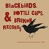 Blackbirds, Bottle Caps & Broken Records: Environmental Artist Bryant Holsenbeck at Work...