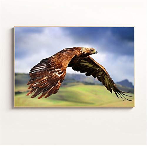 zgldx73 Eagle Poster Animal Print decoración Moderna Home Wall Art Picture Salon decoración de la Pared pintura40x60 CM sin Marco