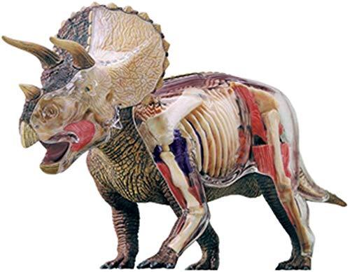 SJBB Simulación del Triceratops Modelo, Media-Transparente Desmontable 42 Partes anatómicas Modelo Animal - Modelo de Enseñanza, Rompecabezas del Juguete de la Asamblea 928