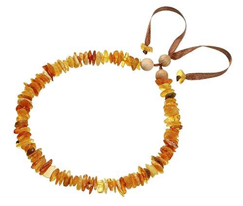 Wenko 80905500 Bernsteinkette für Kleine Hunde - Halsband, 25 - 35 cm, Bernstein, 1 x 35 x 1 cm, Mehrfarbig