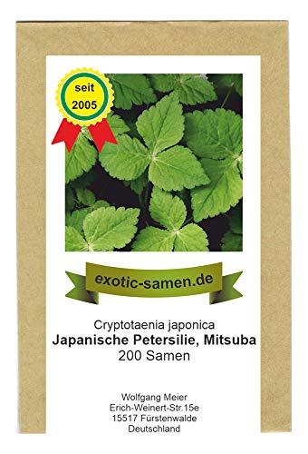 Japanische Petersilie - Mitsuba - Cryptotaenia japonica - mehrjährig - 200 Samen
