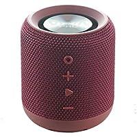 Vieta Pro Easy - Altavoz inalámbrico (True Wireless Bluetooth, Radio FM, Reproductor USB, auxiliar, micrófono integrado, resistencia al agua IPX6, batería de 12 horas) grana
