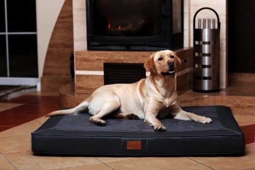 tierlando Oscar VIP Ortho Hundematratze Kunstleder Velours Orthopädisches Hundebett VISCO Größe: OS4 100cm | Farbe: AL-02 Graphit