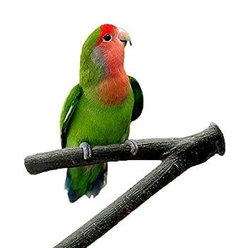 Ukallaite Perchoirs pour cage à oiseaux en bois brut pour perroquets et hamsters