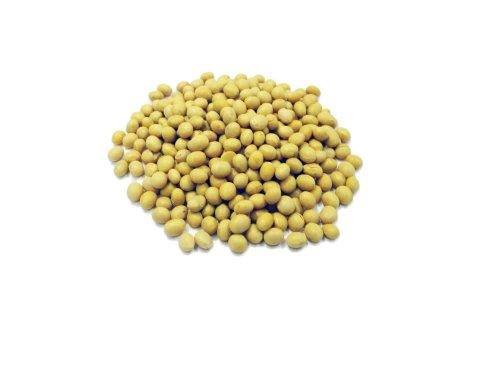 Sojabohnen - 1 kg