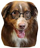 G003 Dog pet Round Costume Prop Glasses Sunglasses Medium Breeds 15-40lbs (Black-Clear Lens)