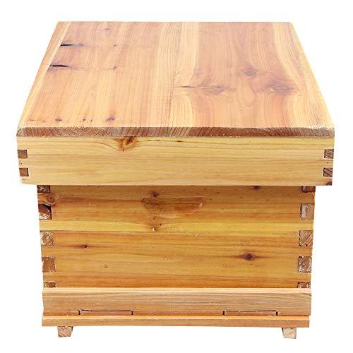 Kit de colmena de abejas, Caja de la colmena Kit completo de cuadro de abeja de 10 cuadros Caja de colmena de apicultura completa de madera Herramienta de apicultura