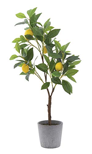 Creative Co-op Lemon Tree in Cement Pot Faux Botanical, Green