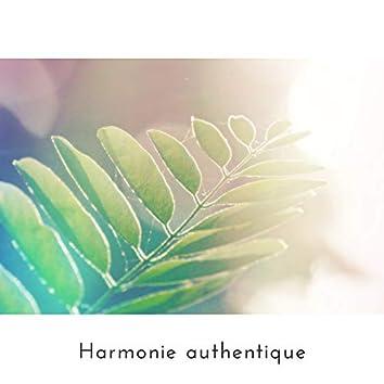 Harmonie authentique: L'influence positive de la nature sur le bien-être