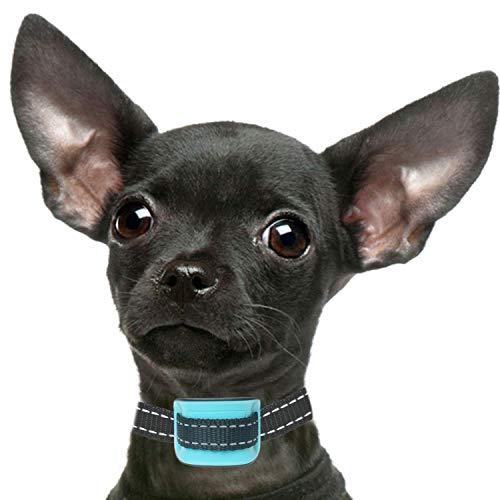 Petsol - Collar antiladridos para Perros pequeños, Color Azul, Entrenar a Perros pequeños y Cachorros, sin Golpes, con 6 Meses de garantía y baterías adicionales Incluidas
