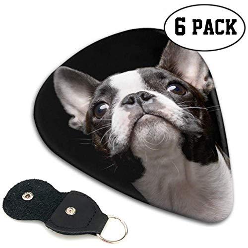Boston Terrier Dog Portrait Costume Púas de guitarra Guitar Pick 6 Pack...