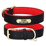 Beirui Collar personalizado de cuero para perro, collar de perro de cuero multicolor para perros de niña, suave collar acolchado para perros pequeños medianos y grandes (negro, L)