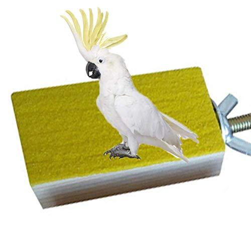 Parrot Perchoir en bois plate-forme Playground Perroquet Gris d'Afrique perruches perruches Amazones cacatoès Perroquet Finch Cage étagère jouet Cage Accessoires (couleur aléatoire) (A)