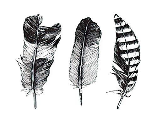 Y·JIANG Pintura de plumas por números, 3 plumas sobre fondo blanco DIY lienzo acrílico pintura al óleo por números para adultos niños decoración de pared del hogar, 50 x 50 cm