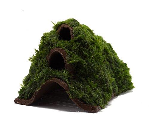 NatureHolic Garnelenberg/Garnelenunterschlupf \'Auenland\' mit Aquarienmoos bewachsen/Garnelen deko/Welshöhle
