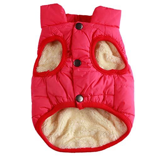 JoyDaog 2-lagige mit Fleece gefütterte Hundejacke, sehr warm für Winter und kaltes Wetter, extraweiche, winddichte Hundeweste,rose,M
