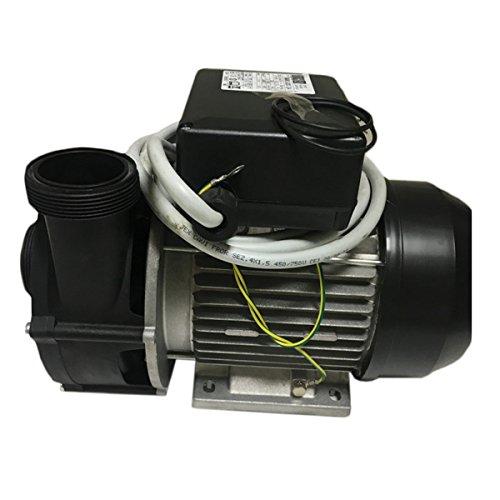 TEUCO Simaco 81100444700 - Repuesto de bomba para minipiscinas de 2 velocidades