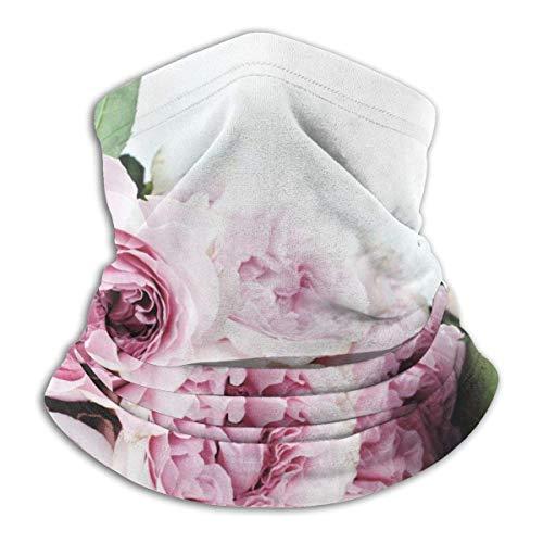 Pink Cat Mouse Halbgesichtsschild Sturmhaube Halsmanschette Winter Skischilde für Männer Frauen