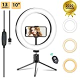 10' LED Ring Light with Tripod Stand & Phone Holder for Live Streaming & YouTube Photography Video,...