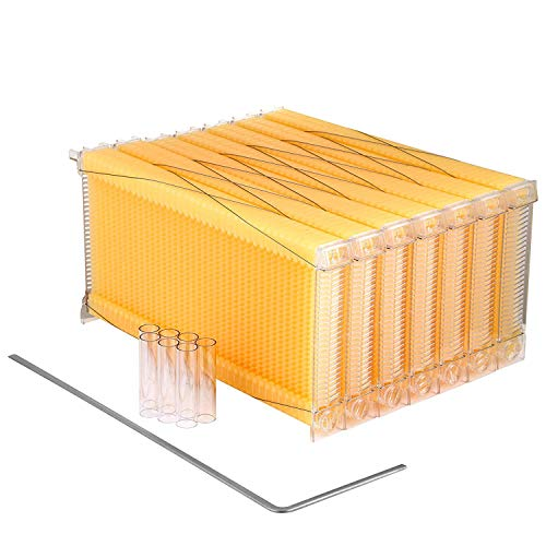 Happybuy Auto Flow Bee Comb Beehive Frames Kit Raw Honey Beekeeping 7...