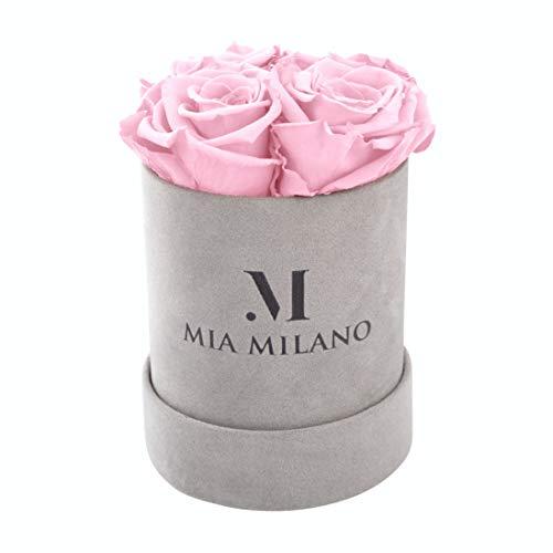 Mia Milano Infinity-Rosenbox | 4 Eternity-konservierte Rosen (3 Jahre haltbar) Samt-Blumenkasten für die Lieferung