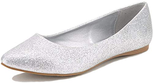 DREAM PAIRS Sole Classic Women's Casual Pointed Toe Ballet Comfort Soft Slip On Flats Shoes Silver Glitter Size 9.5