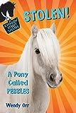 STOLEN! A Pony Called Pebbles (Rainbow Street Shelter, 5)