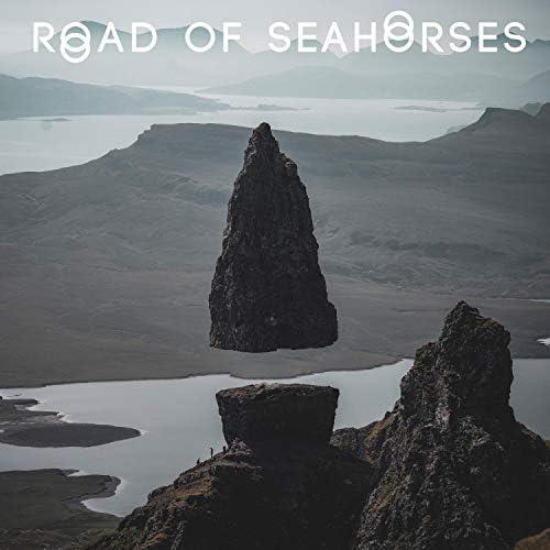 Road of Seahorses