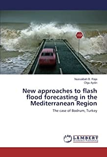 New approaches to flash flood forecasting in the Mediterranean Region: The case of Bodrum, Turkey