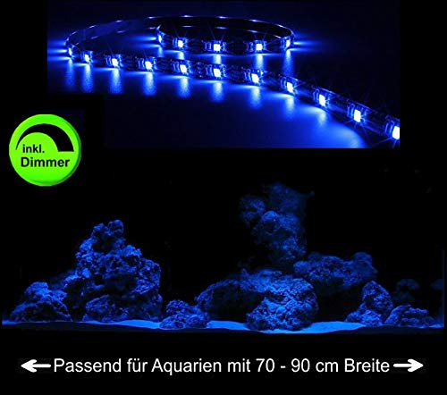 creative lights AQUARIUM MONDLICHT, LED LICHTLEISTE 60 CM + DIMMER KOMPLETTSET FLEXI-SLIM BLAU