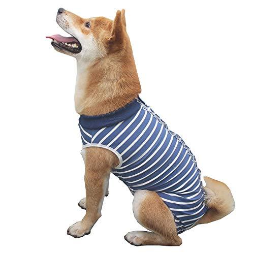 IYSHOUGONG Hunde-Rehabilitationsanzug, Bauch-Wundschutz, medizinische OP-Kleidung, Alternative nach Operationen, gegen Lecken von Wunden für Hunde, gestreift, XS