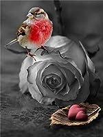 番号によるDiyペイントリビングルームの装飾絵画のためのデジタルキット装飾ギフト鳥ピンク大人の油絵