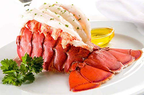 Maine Lobster Now  Maine Lobster Tails 12oz  14oz 4 Tails