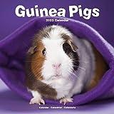 Guinea Pig Calendar - Cute Animal Calendar - Calendars 2021 - 2022 Wall Calendars - Animal Calendar - Guinea Pigs 16 Month Wall Calendar by Avonside