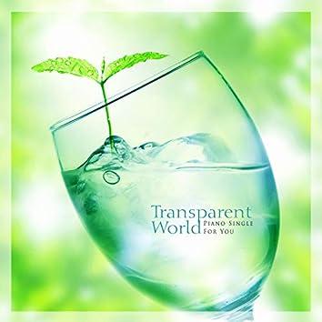 투명한 세상