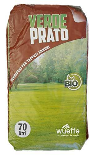 WUEFFE Terriccio Professionale Prato - Sacchi 70 lt - Semina tappeti erbosi 80 (1 Sacco da lt.70)